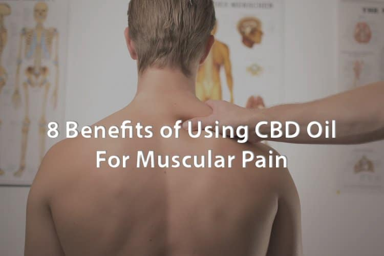 8 Benefits of Using CBD Oil for Muscular Pain 1