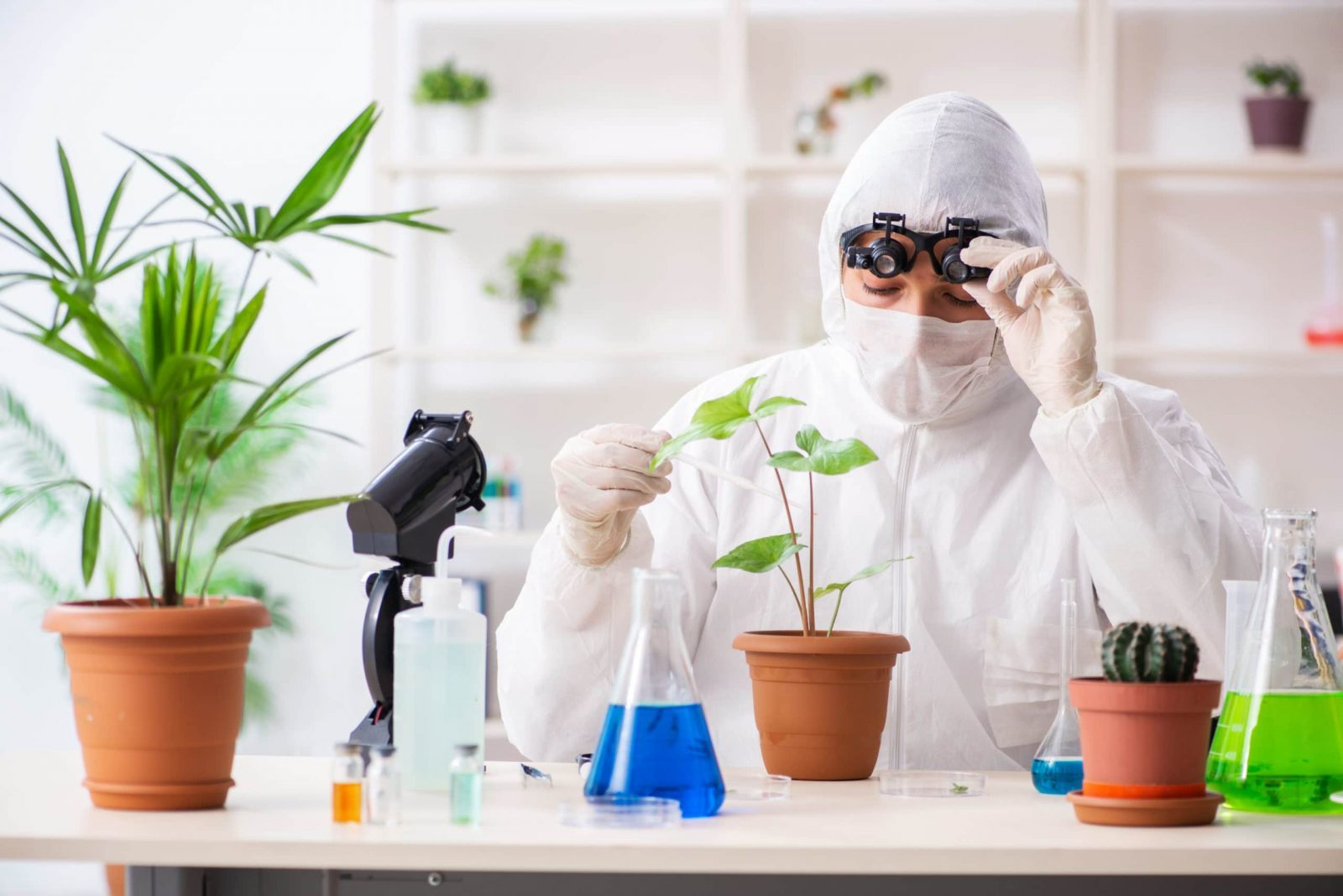 Why Third-Party Testing Is Important For CBD Quality Control?
