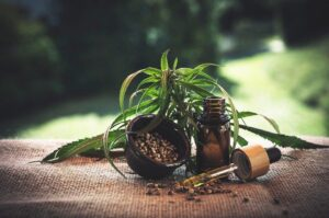 Cbd, Cannabidio, Cbd Oil, Hemp Oil, Marijuana, Cannabis