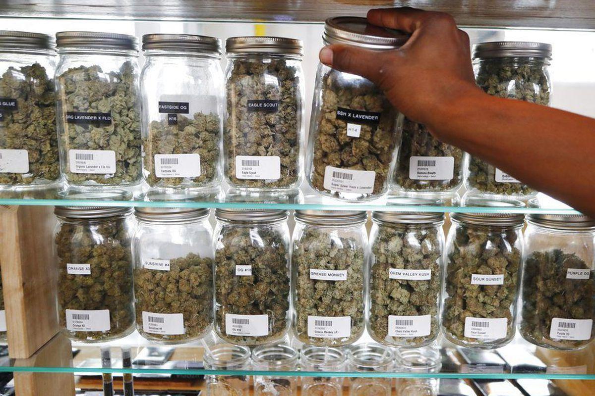 the marijuana dispensary